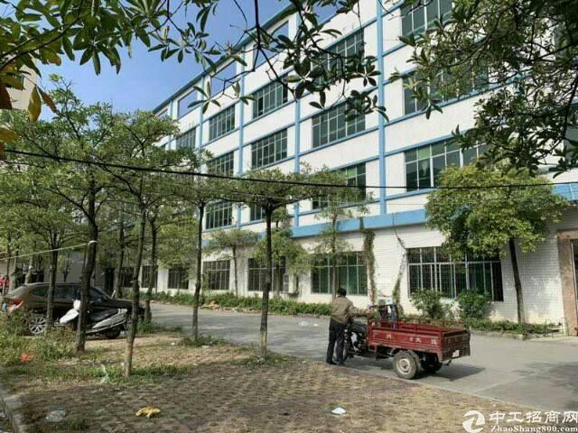 广州靠近中堂独院花园式厂房招租