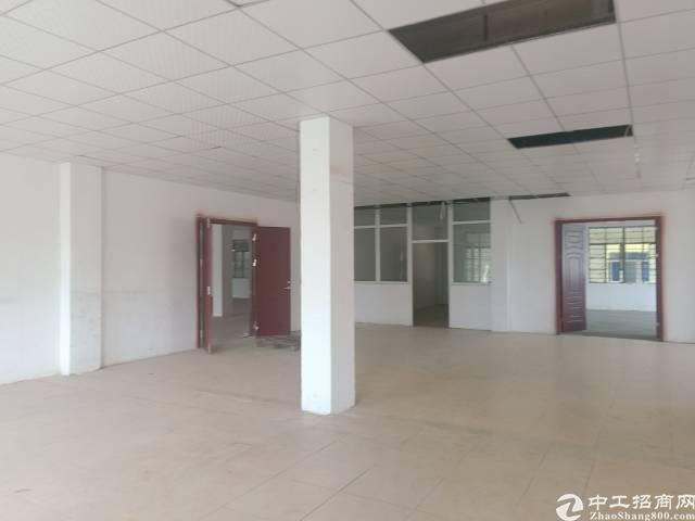 公明李松蓢楼上1500平方,带精装修办公室,可分租