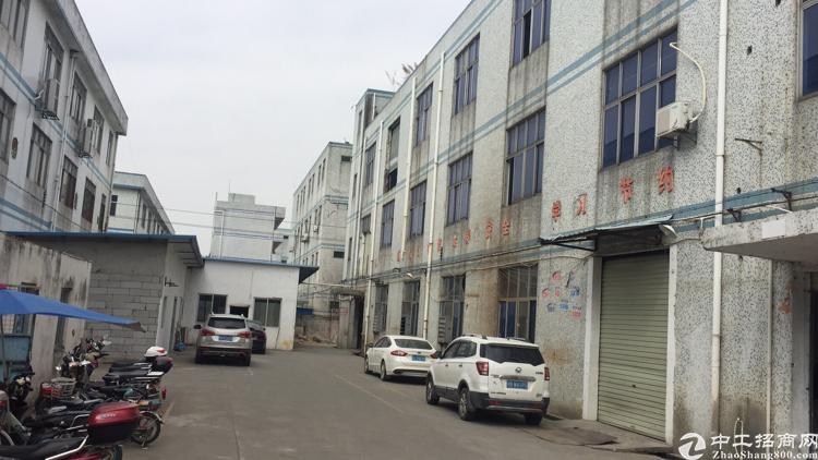 沙井鸿展通附近厂房招租