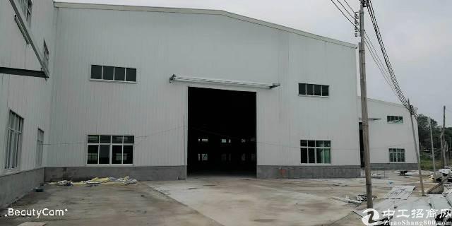 茶山全新钢结构厂房3000平起分租