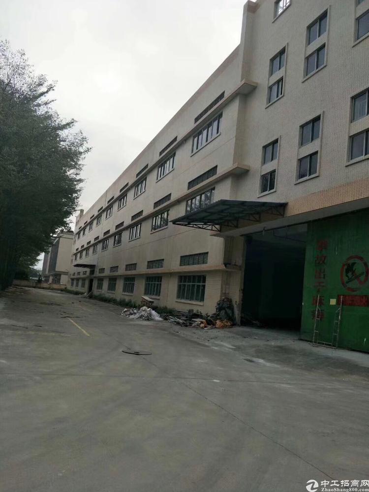 福永凤凰原房东厂房一楼2500平