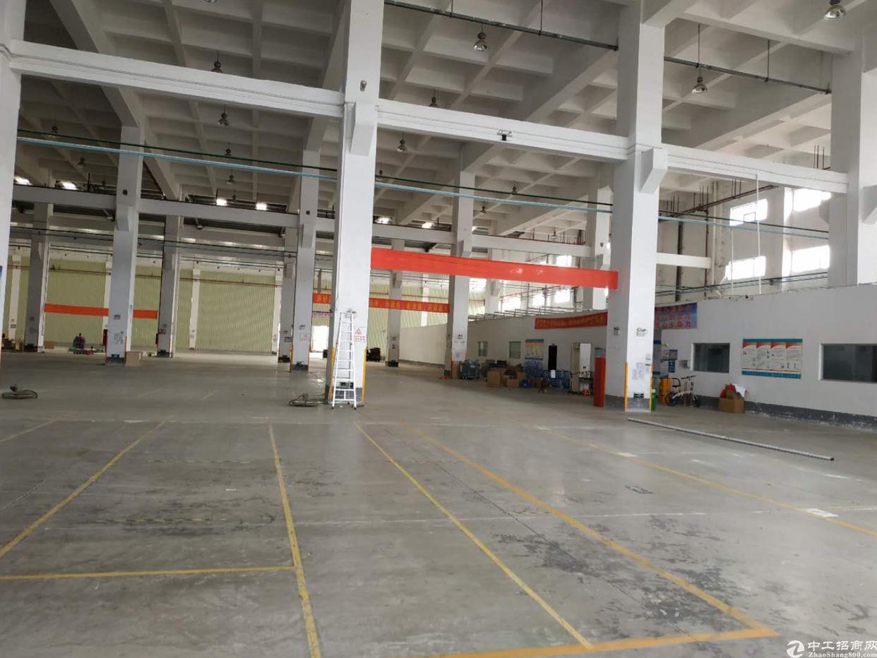 独院钢构厂房出租4万平10米高形象好空地大