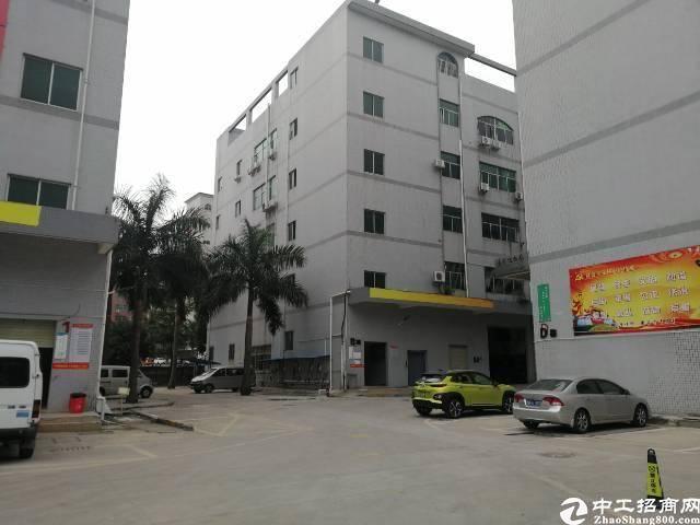 坂田坂李大道附近独院红本厂房出租