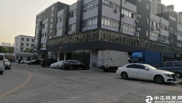 坂田五和一楼1500平方标准厂房出租!