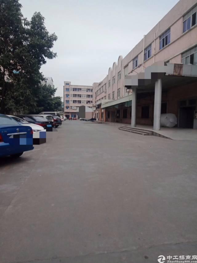 长安镇广深高速附近新出一楼带装修1900平方