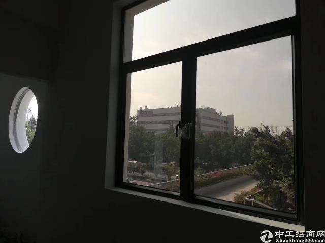 西乡桃源居阿凡达智创园办公研发楼大小面积招租