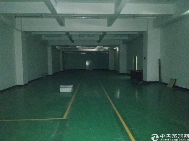 沙井新出楼上302平米厂房出租