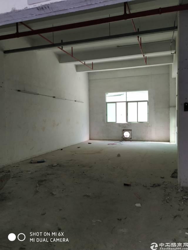 西乡固戍一路大型工业园一楼标准厂房出租