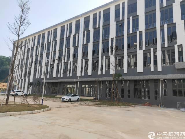 清溪镇原房东标准厂房厂房13800平出租高端行业优先