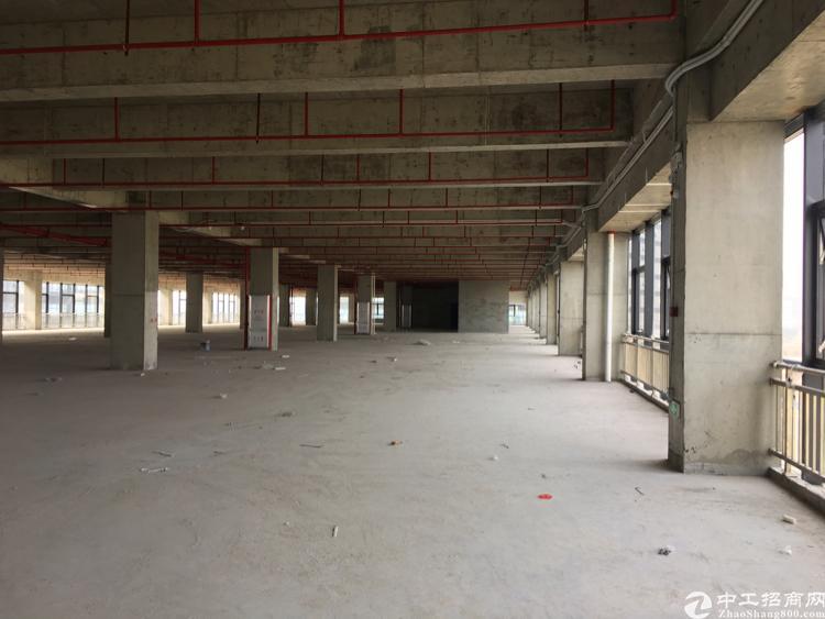常平镇全新一手厂房5成首付国有红本产权50年
