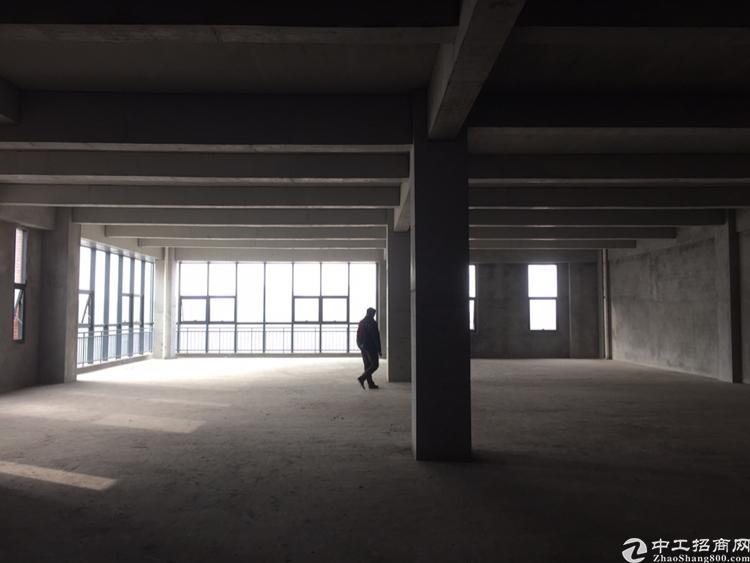 两江新区水土标准厂房可租可售可定制