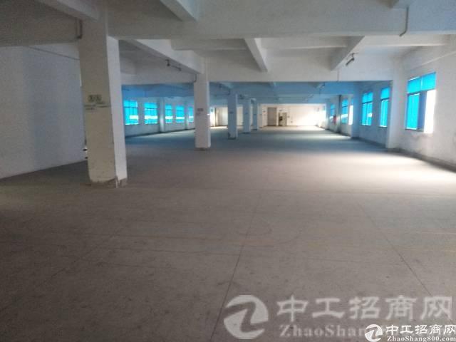 厚街新塘社区原房东单一层厂房1000平方出租,租18元/平方