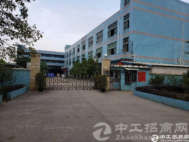 黄江形象好的独院厂房6500平方出售
