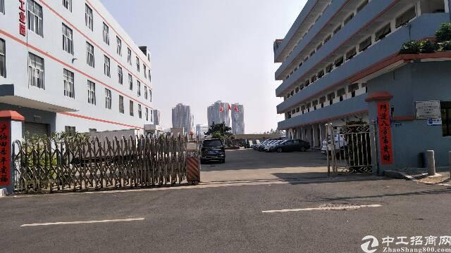 平湖华南城上木古村二楼电商仓库出租800平米