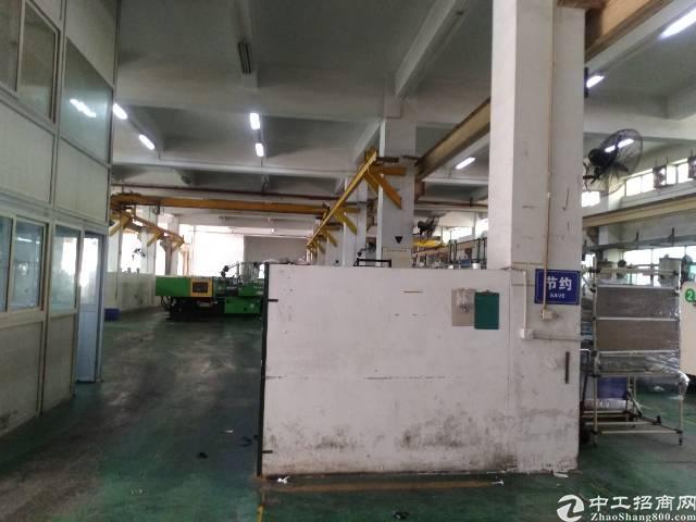 帝堂路工业区新出一楼1350平方厂房