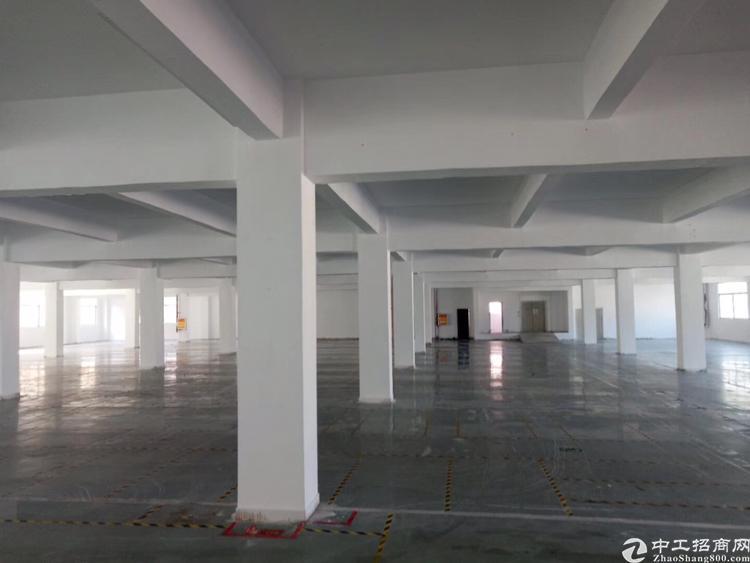 大浪红本厂房,6楼7楼每层3155平,可分租,