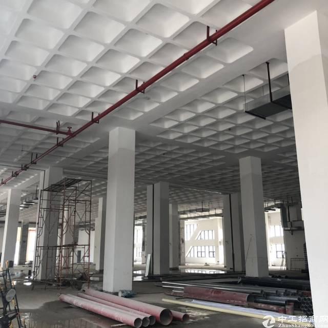 南沙12万平米全新厂房出租1000平米起分租-图2