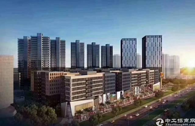常平项目一期新推出整栋厂房 首层6米