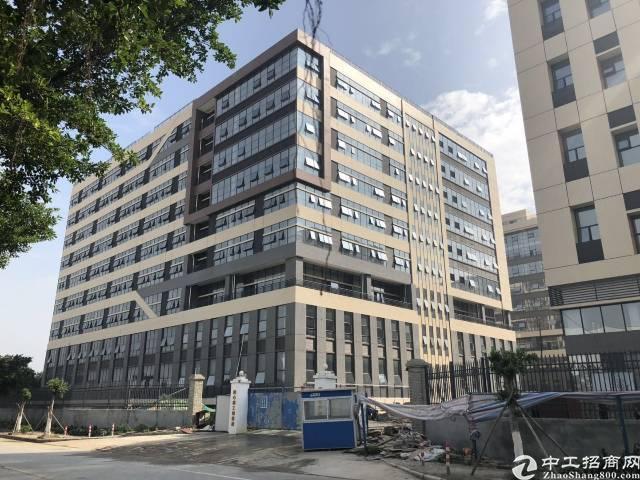 南沙12万平米全新厂房出租1000平米起分租-图4