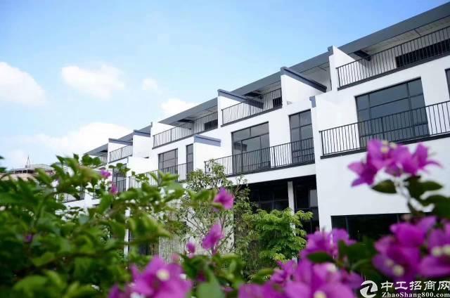 优质•黄埔鱼珠独栋联排别墅办公首层高5.9米户户私家花园