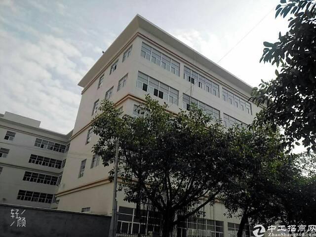 广州黄埔占地15000㎡全新国有双证厂房出售