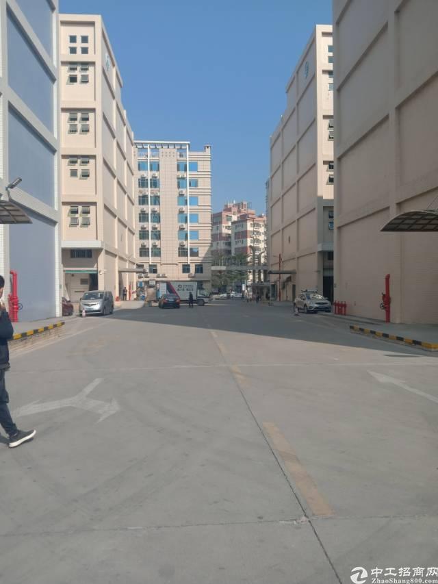 龙华大浪龙观路旁七成使用率厂房出租。
