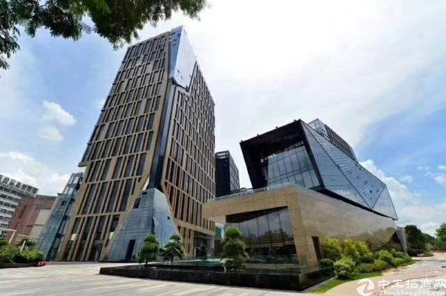 坂田大型园区租售共8万平方