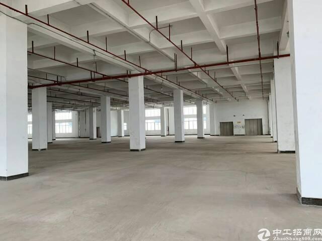 增城区新塘镇汇美村兴业南路280号独院厂房出租