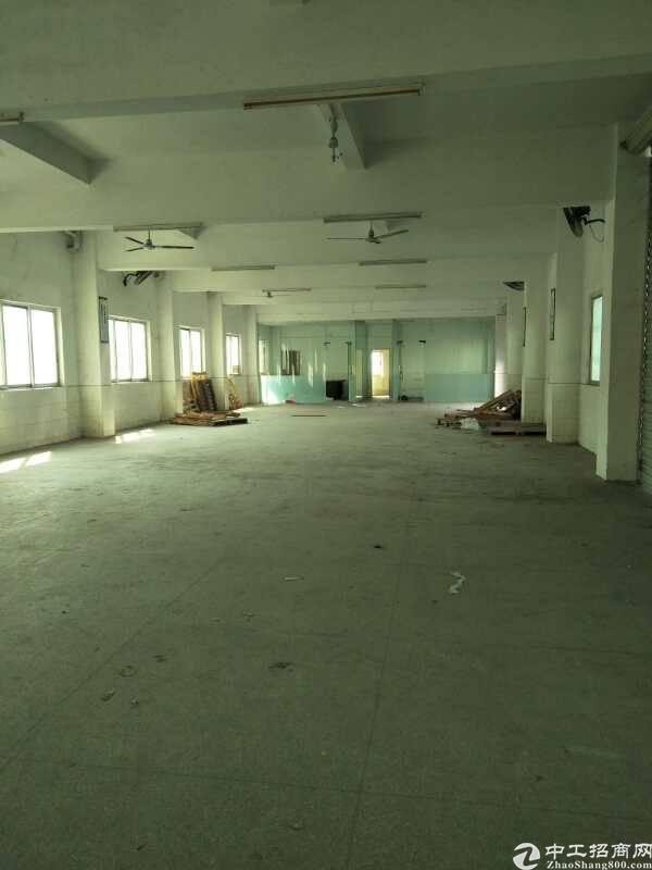 塘厦科苑城宿舍1楼600平方,仓库物流可考虑