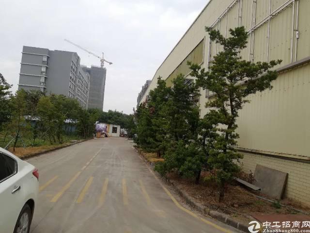 白云区太和镇民营科技高端钢构厂房滴水九米