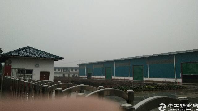 汉口独院钢构30米大跨大小任意选,长100米,不限行业