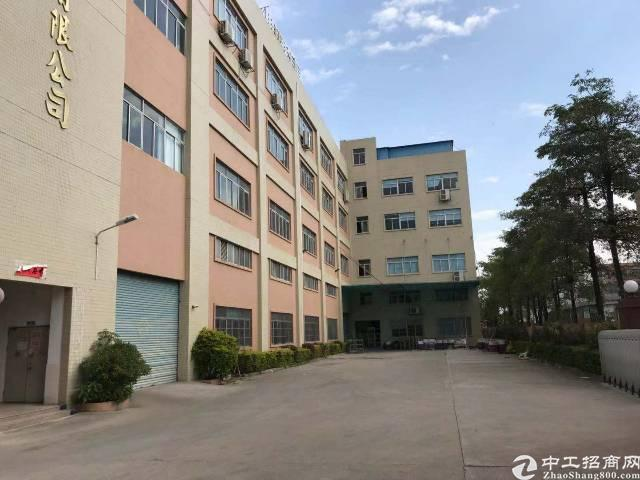马安镇2400平方一楼带精装修出租
