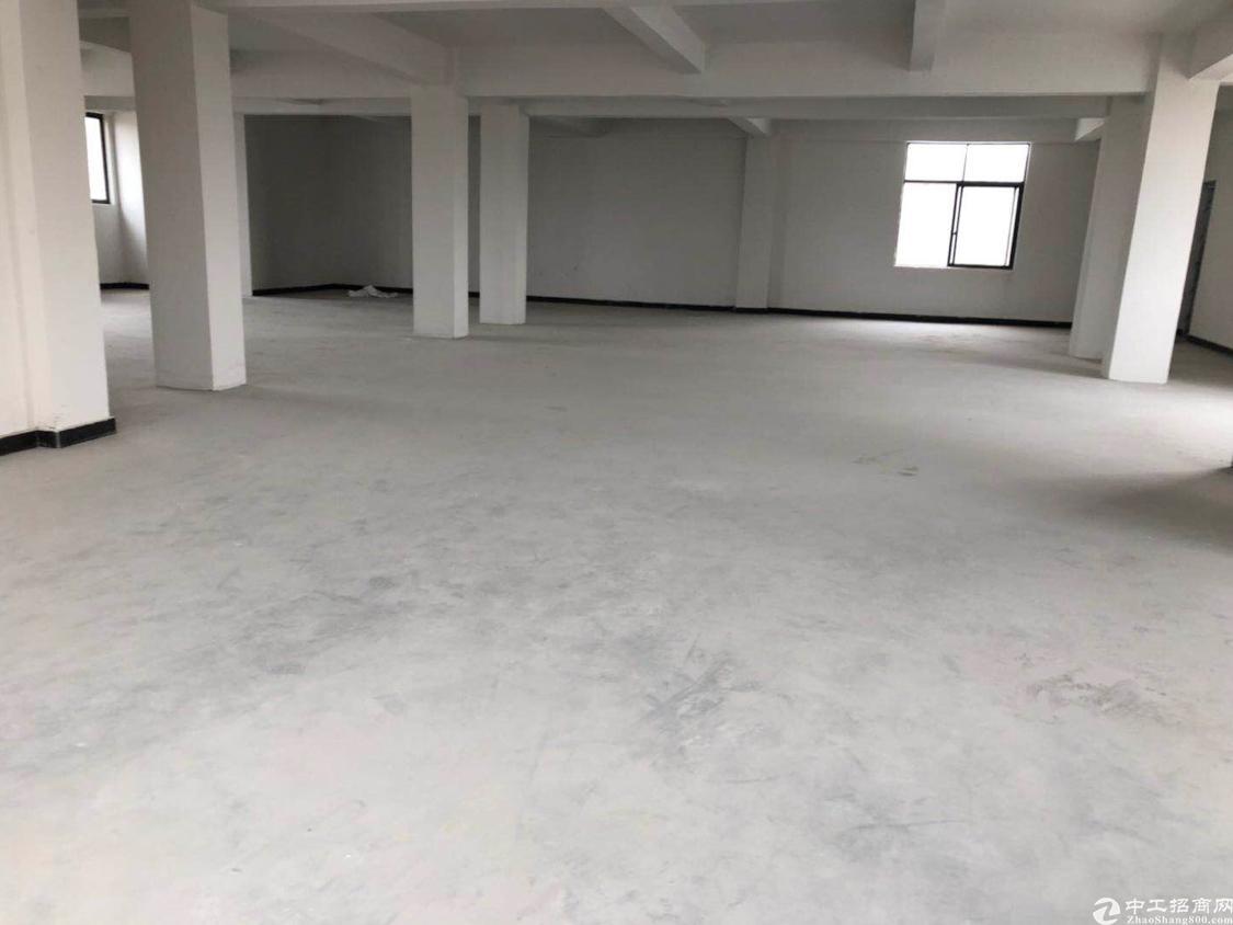 番禺南村樟边村新出305方4000元厂房招租