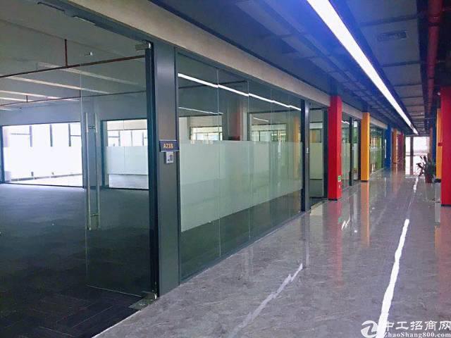 沙井松岗创业基地精装修写字楼60到1000平方任选