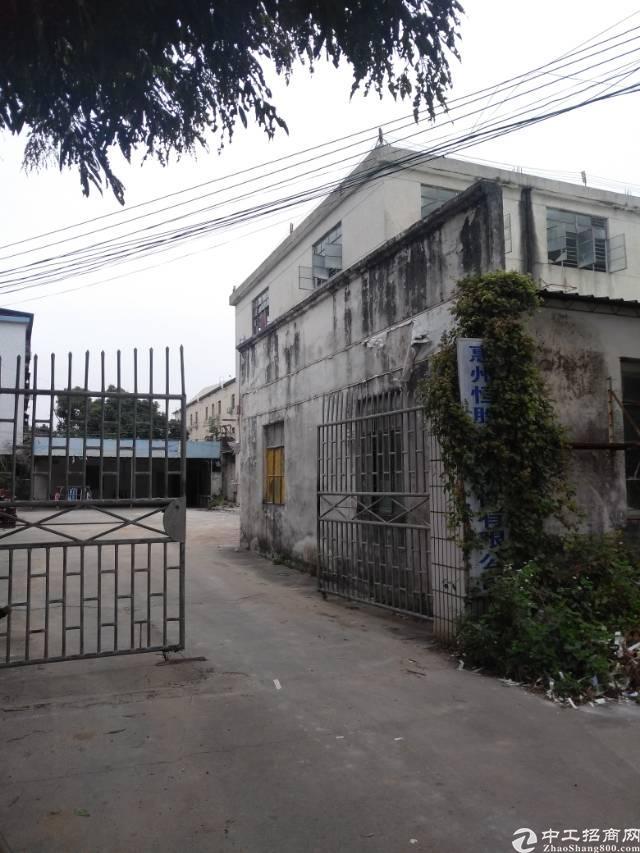 惠城区全新独门独院标准厂房2400平方