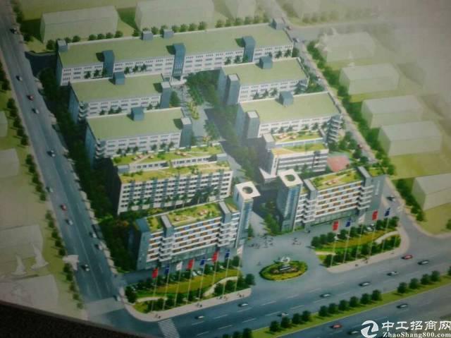 占地9万平红本工业园出售,位置好有实力者可改商住