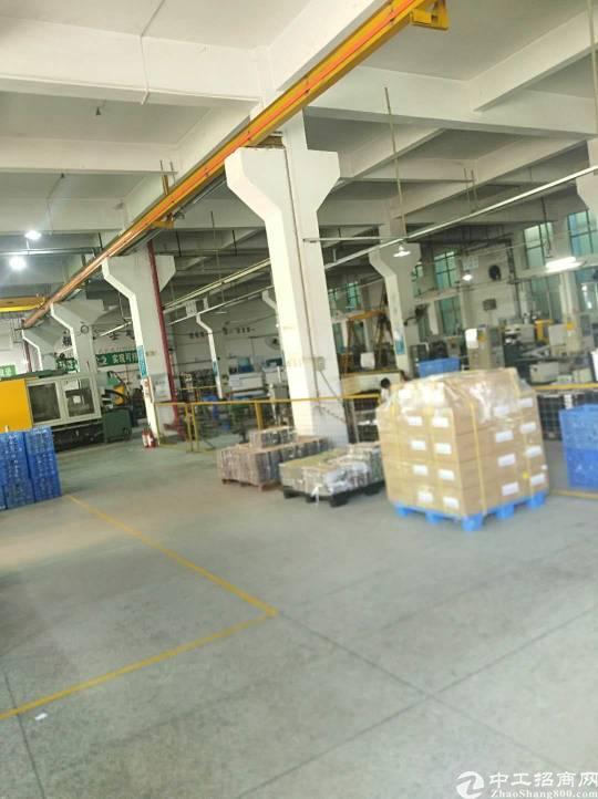 惠城区全新厂房一楼1800平方