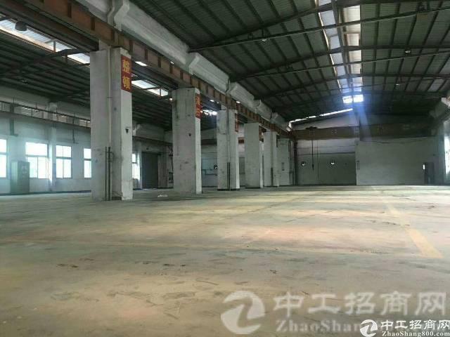 观澜牛湖原房东8米高带牛腿8000平钢构厂房