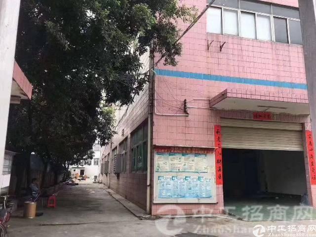 观澜福民带红本独院厂房出租,5500平四层
