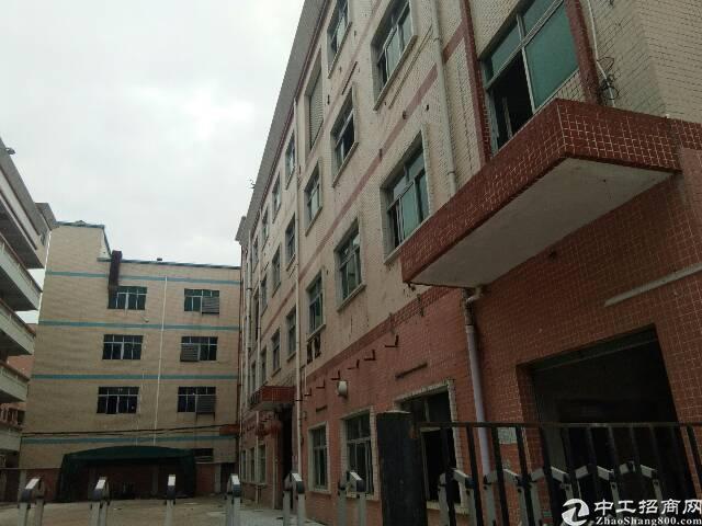 龙岗宝龙厂房每层1800平共7200平