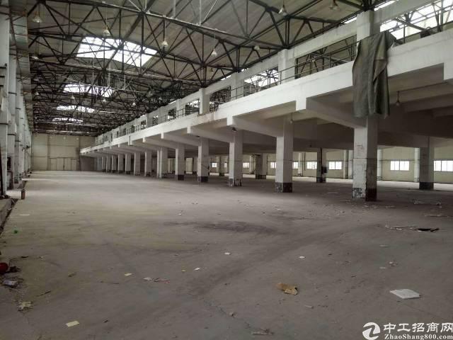凤岗五联13000平米标准物流仓库出租-图2