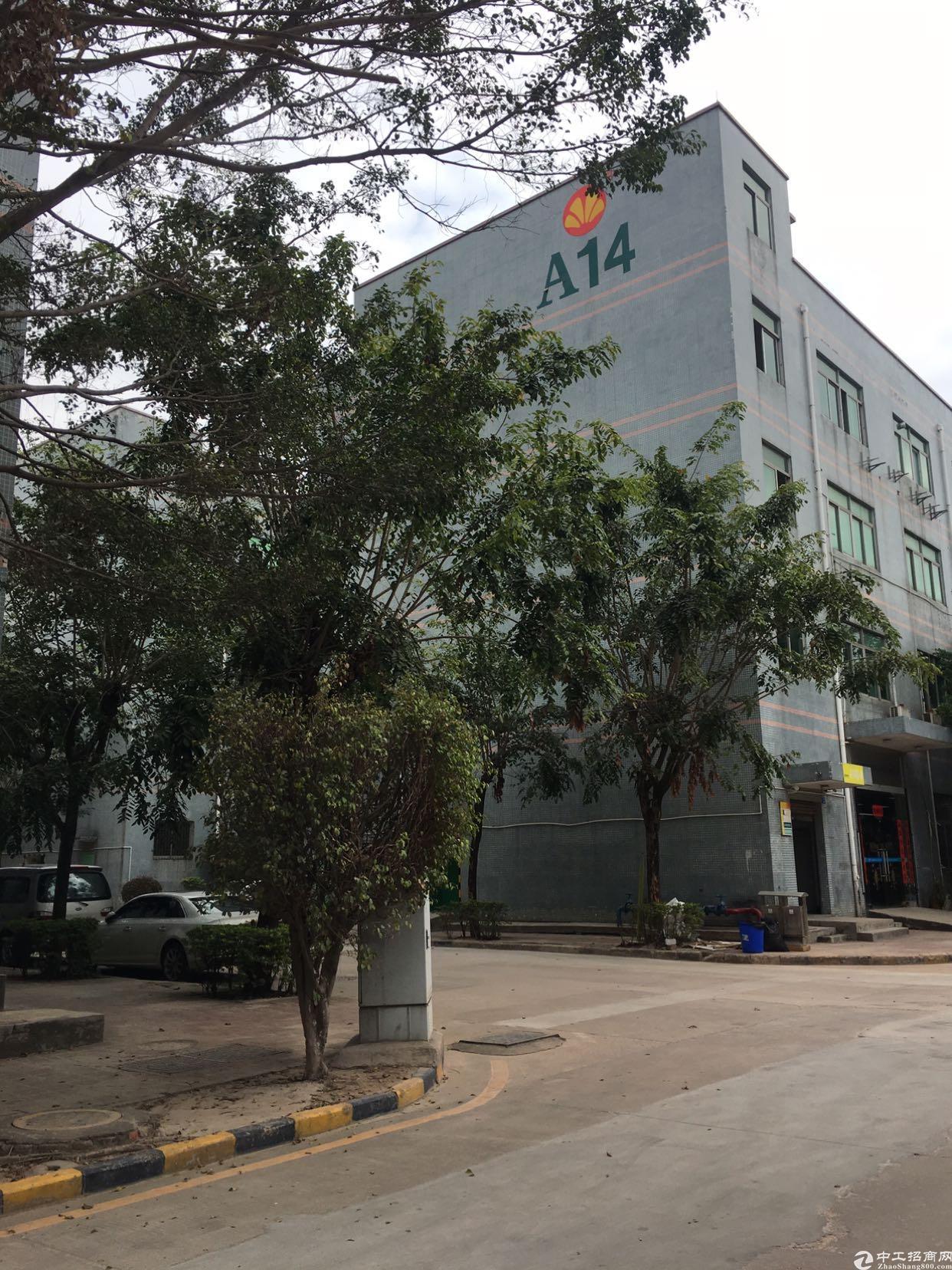 清湖大园区精装办公室厂房出租最小200平起租,价格28块每平