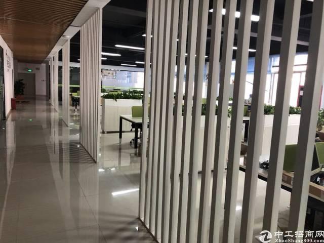大浪商业中心1200平办公室招租