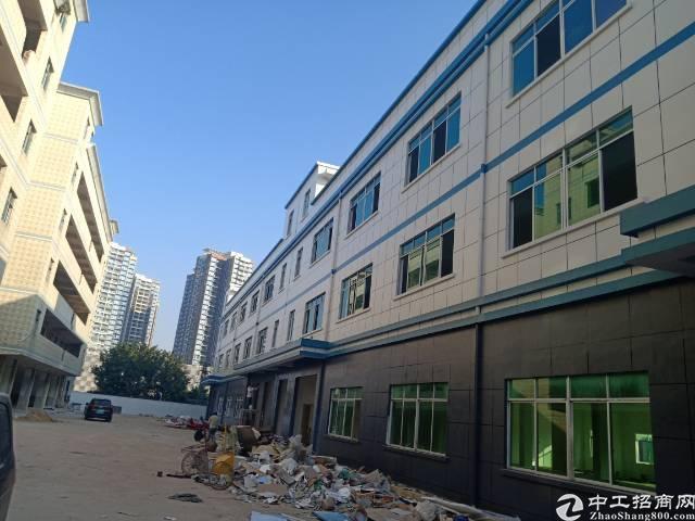 平湖华南城附近机荷高速出口新出全新厂房8400平100平起租