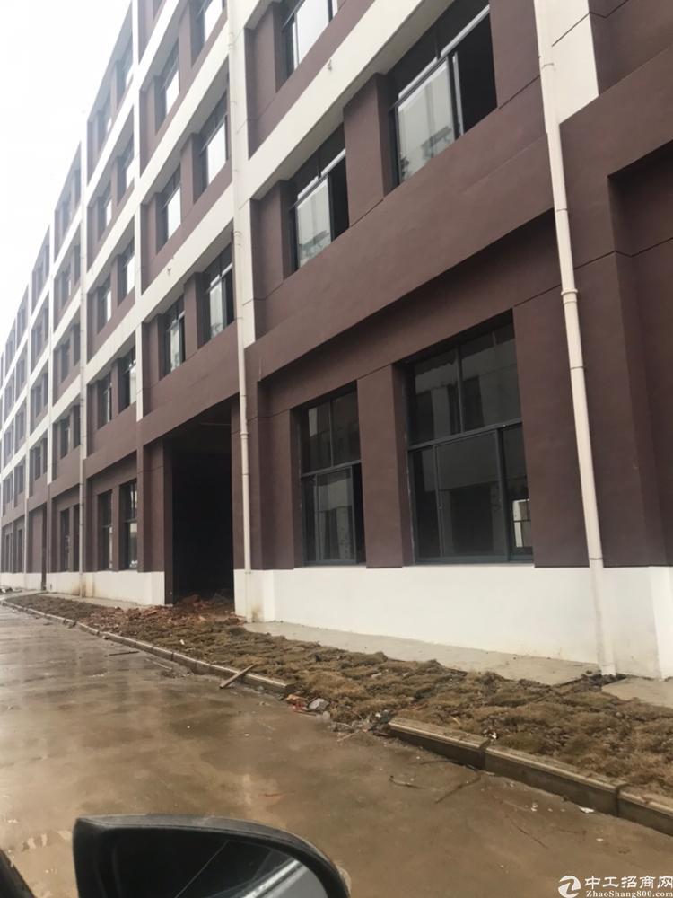 江夏新建标准厂房