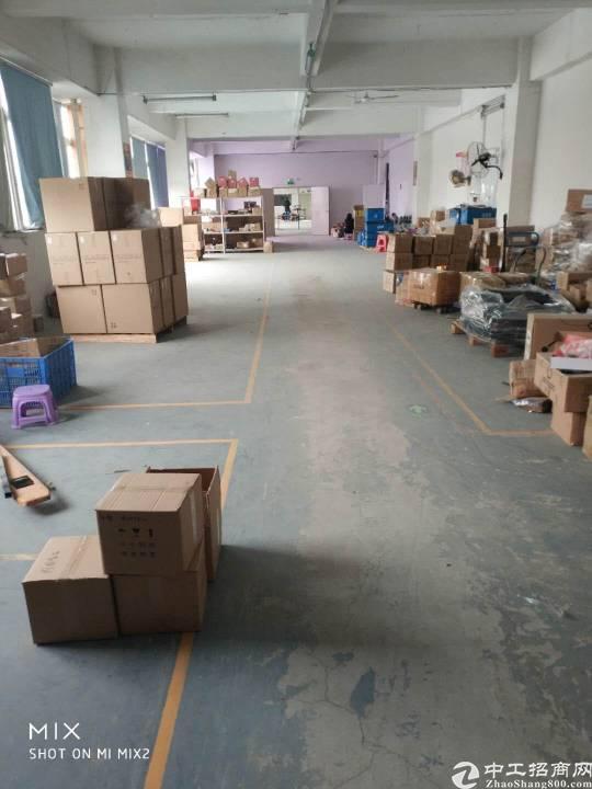 龙华大浪新佰丽附近新出1160㎡豪华精装修标准厂房对外招商