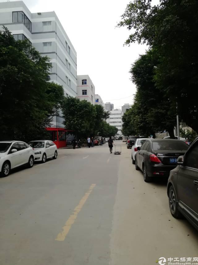西乡9300平独院带装修厂房出租,300平起分租