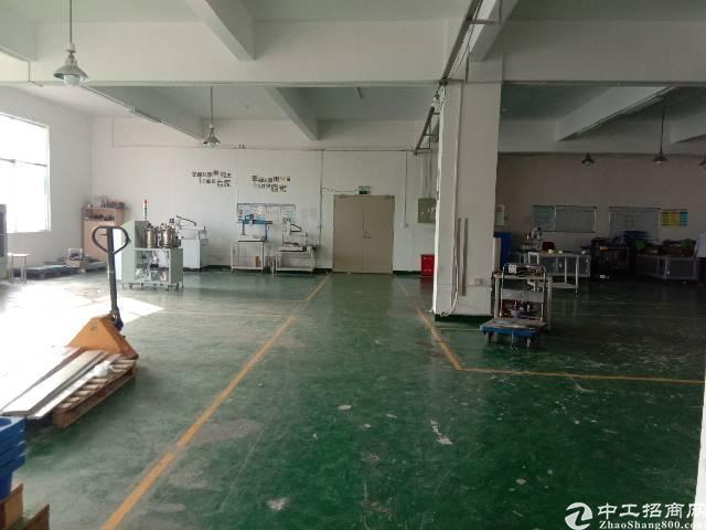 观澜福民新出原房东楼上1100平精装修厂房