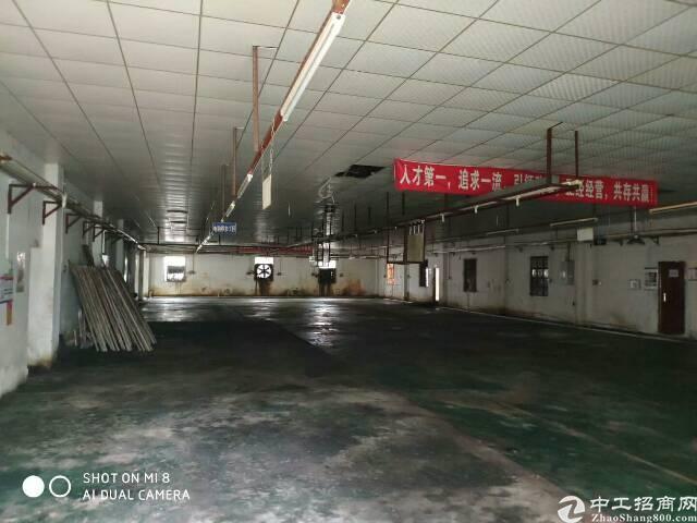 坪地原房东独院6米高钢构1700平米招租