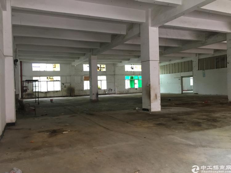 龙华天虹商场附近新出独栋厂房出租,单层面积2680平方米
